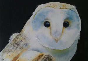 Owl Watercolor at Gallery at Rockhill